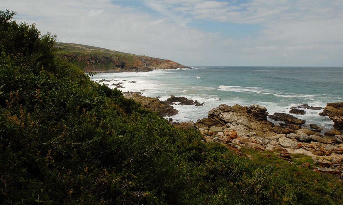 Beach view of South Africa field site