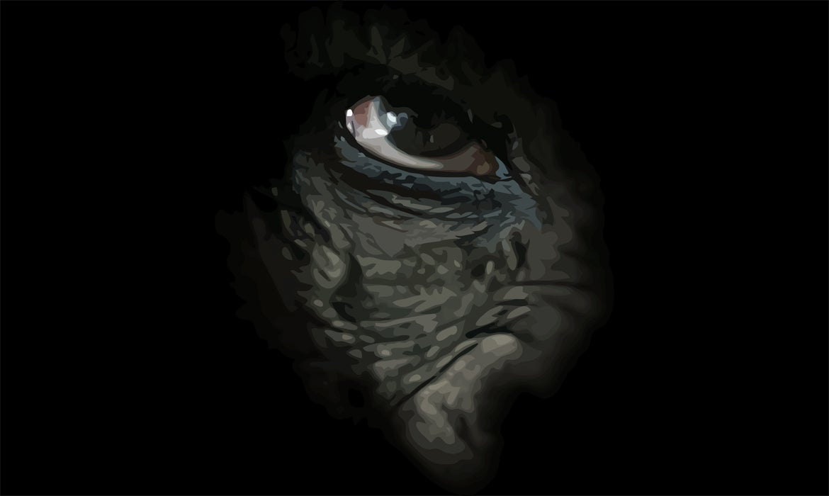 Stylized image of a chimpanzee's face fading into a black background